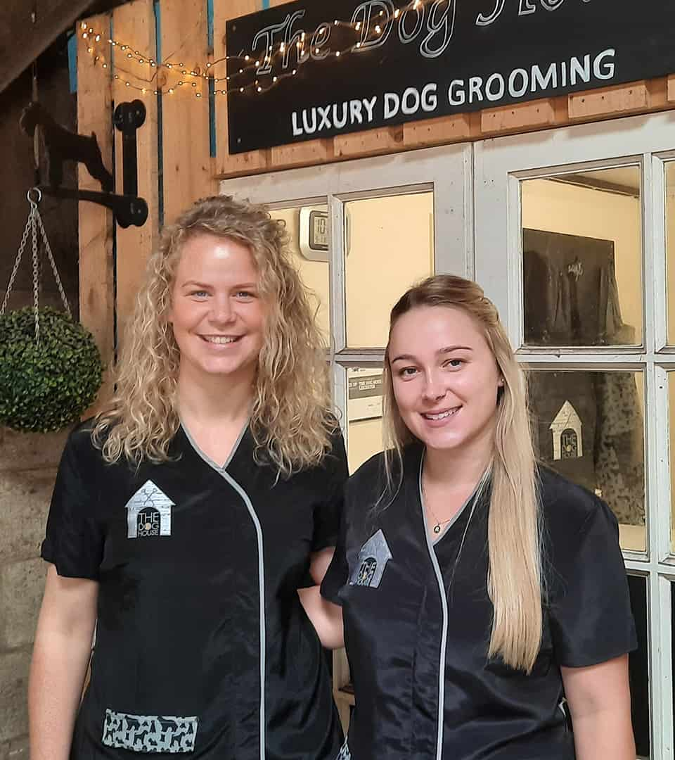 The dog House Leicester Grooming