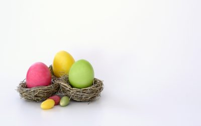 Common Poisons to look out for this Easter